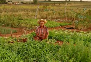 O agricultor José Maurin, de 75 anos, foi um dos afetados pelo corte no programa Aquisição de Alimentos (PAA) Foto: Lucilei Guilhe / O Globo