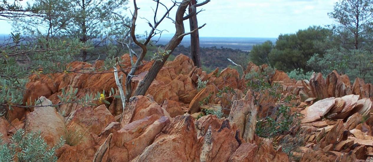 Imagem de 2005 mostra fóssil encontrado na Austrália como contendo indícios de vida 300 milhões de anos antes do que se pensava Foto: Bruce Watson / Bruce Watson/AP