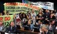 Manifestantes protestam contra mudanças no Estatuto do Desarmamento