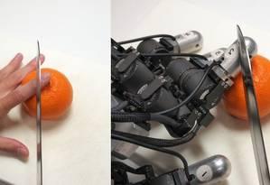 Cientistas japoneses fizeram testes simulando situações de dor em mãos humanas e robóticas Foto: Divulgação/Universidade TOYOHASHI de Tecnologia