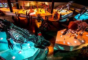 O The Houston Museum of Natural Science Foto: Divulgação