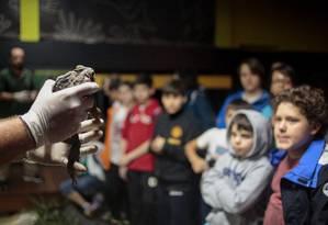 Crianças veem funcionário mostrar um sapo, em visita noturna do Jardim Zoológico de São Paulo Foto: Pedro Kirilos / Agência O Globo