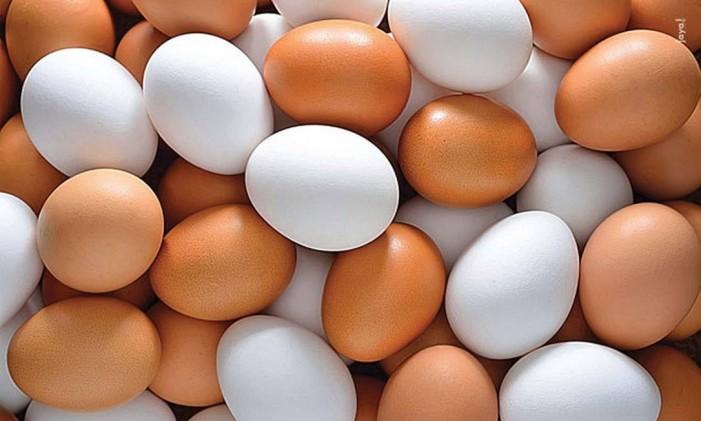 Ovos Foto: Divulgação