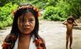 Preservação . Aldeia Itaxe Mirim, às margens da Rodovia Paraty-Mirim: exemplo de luta para manter cultura indígena