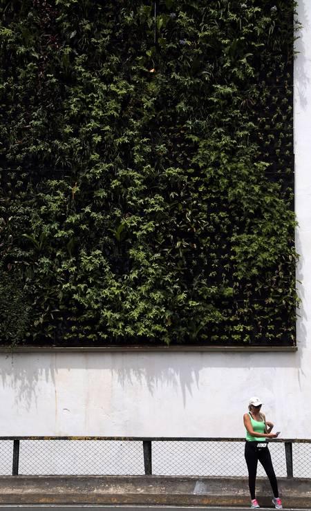 PAISAGEM. No Elevado Costa e Silva, mais conhecido como Minhocão, mulher faz selfie com jardim vertical ao fundo Foto: Fernando Donasci / Agência O Globo