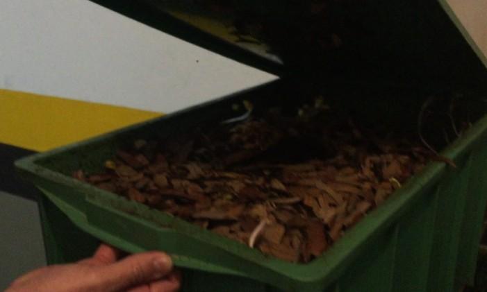 Composteira usa minhocas para transformar lixo em adubo Foto: Guilherme Ramalho