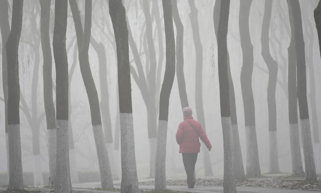 Uma visitante caminha entre o arvoredo perto do Xī Hú (Lago Oeste), lago de água doce, envolta em denso smog em Hangzhou, na província de Zhejiang, na China, em 8 de dezembro de 2015 CHINA DAILY / REUTERS