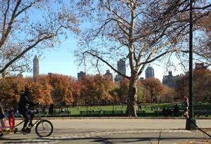 O icônico Central Park, em Nova York Foto: Carolina Mazzi / Agência O Globo