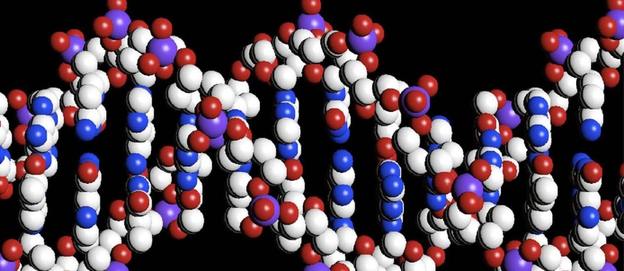 Reconstrução em computador de molécula em formato de hélice dupla de DNA: técnica permite cortar trechos específicos para eliminar ou inserir nucleotídeos na sequência genética de forma relativamente simples, rápida e barata Foto: The Wellcome Trust/REUTERS