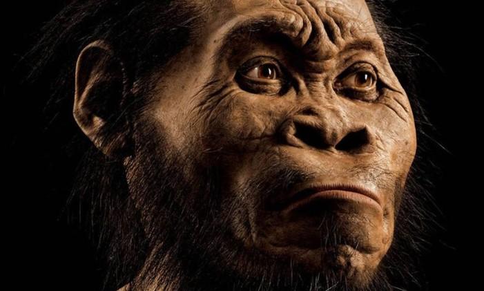 Homo naledi, a nova espécie teria vivido entre 3 milhões e 2 milhões de anos atrás Foto: MARK THIESSEN / AFP