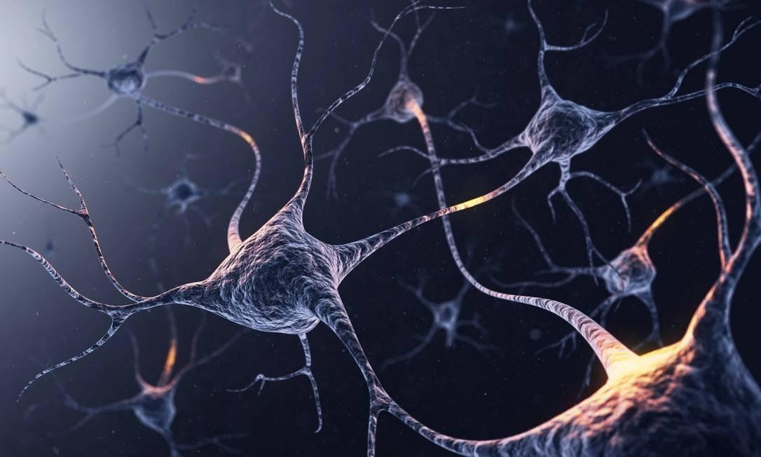 Cientistas identificam pela primeira vez os 'genes da inteligência'