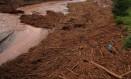 Homem caminha sobre restos de galhos e árvores no Rio Doce, no município de Rio Doce, quatro dias após o rompimento de duas barragens em Minas Gerais Foto: Daniel Marenco / Agência O Globo / 9-11-2015