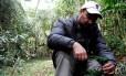 Madeira boa: Mauro Galetti durante pesquisa na mata