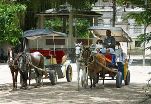 Cavalos usados durante passeios na Ilha de Paquetá Foto: Arquivo/25-5-2011