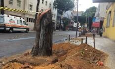 Leitor reclama do corte de árvores no Centro Foto: Foto do leitor Filipe Gonçalves / WhatsApp do GLOBO