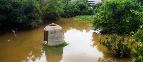 Obra de OSGEMEOS em meio ao jardim inundado Foto: Divulgação