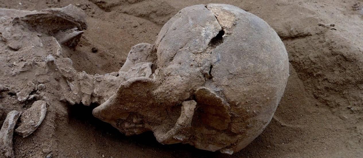 Detalhe do esqueleto de um dos homens mortos no massacre, com múltiplas lesões à frente e atrás do crânio consistentes com ferimentos causados por pauladas na cabeça Foto: Marta Mirazon Lahr/Fabio Lahr