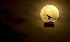 Noites iluminadas: Fotógrafos partilham seus registros no grupo de Facebook 'Caçadores do Sol e da Lua' Foto: Divulgação / Ulysses Padilha