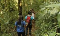 Turistas caminham por trilha no Parque Nacional da Tijuca Foto: O Globo / Luiz Ackermann