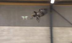 Vídeo com a ação da águia foi divulgado pela polícia holandesa Foto: REPRODUÇÃO/YOUTUBE