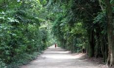 Entrada do Bosque da Freguesia, um dos redutos arbóreos restantes no bairro Foto: Freelancer / Agência O Globo