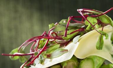 Salada de aspargos trufados e queijo, um exemplo de prato leve. Mas atenção: nada de se limitar a isso Foto: Rodrigo Azevedo / Divulgação/Rodrigo Azevedo