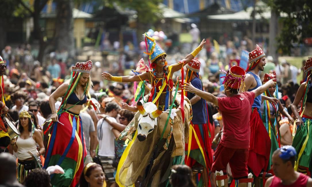 A Terreirada Cearense desfilou pela primeira vez na Quinta da Boa Vista e os foliões capricharam na fantasia Fernando Lemos / Agência O Globo