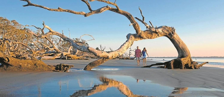 Praia. A Driftwood Beach, em Jekyll Island, é destaque de arquipélago Golden Isles, nos arredores da charmosa Savannah Foto: Divulgação
