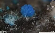 Nevadaita. Raridade minúscula composta por vanádio e que só surge sob condições ambientais específicas Foto: Robert Downs, University of Neva