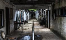 A cocheira onde charreteiros de Paquetá abrigam os animais, com esgoto correndo pelo meio, telhado, divisórias e portas quebradas Foto: Márcio Menasce