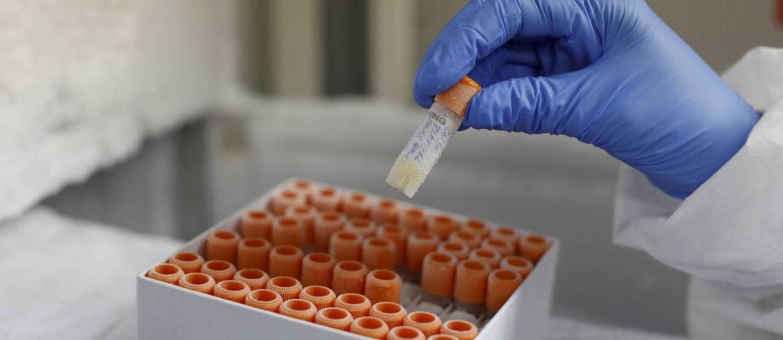 Laboratório de Virologia Molecular da UFRJ, onde pesquisadores, pela primeira vez no Brasil, comprovaram a presença do vírus zika em cérebro de fetos Foto: Domingos Peixoto / O Globo