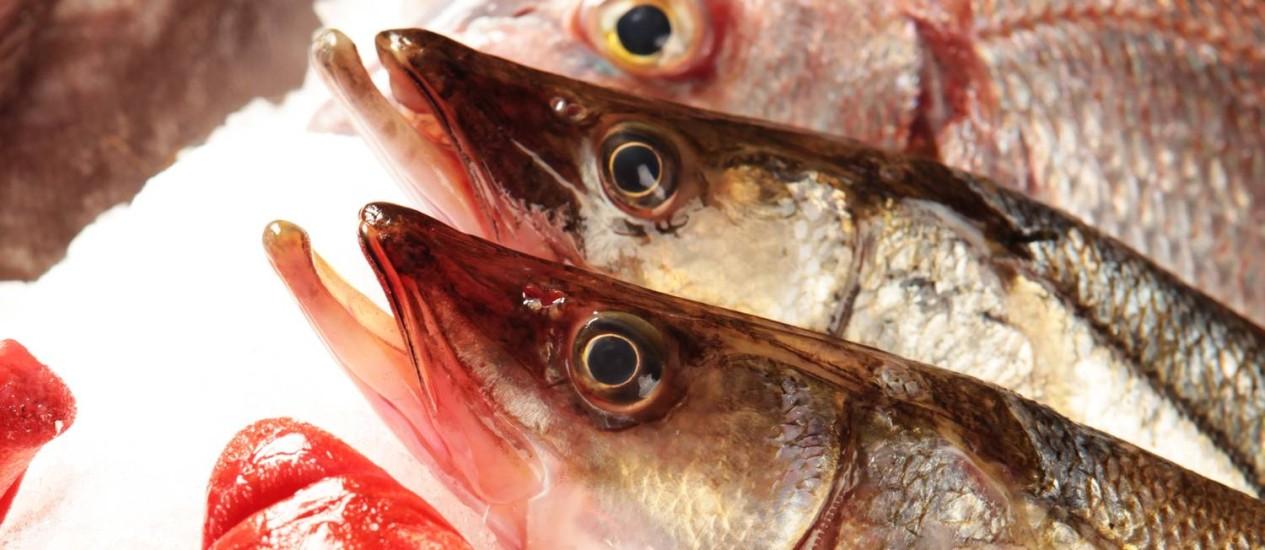 Perigo invisível: risco de contaminação levou agências americanas a recomendaram consumo limitado de peixes por grávidas Foto: Berg Silva