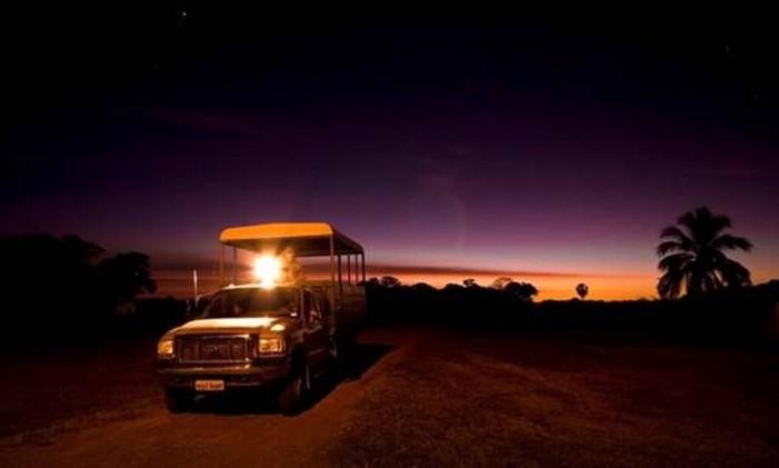 Passeio noturno para observação de animais Foto: Divulgação