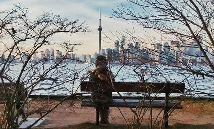 Parque em Toronto Foto: @juli.jssp / Instagram