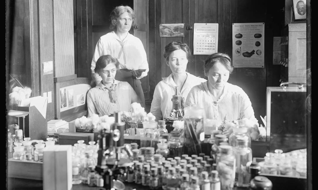 Mulheres cientistas: Nellie A. Brown (de pé), Lucia McCollock, Mary K. Bryan e Florence Hedges (sentadas, esquerda para a direita) trabalham em um laboratório, 1910-1920 HANDOUT / Biblioteca do Congresso dos EUA