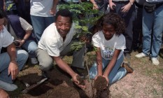 Pedra fundamental. Pelé planta uma muda de pau-brasil na Ilha do Fundão, em 1996 Foto: Arquivo O Globo / Agência O Globo