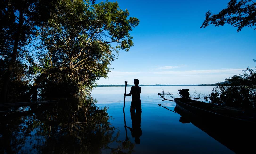 No dia mundial da Floresta, indígenas tentam salvar ecossistema próximo ao rio Tapajós Valdemir Cunha / © Valdemir Cunha / Greenpeace