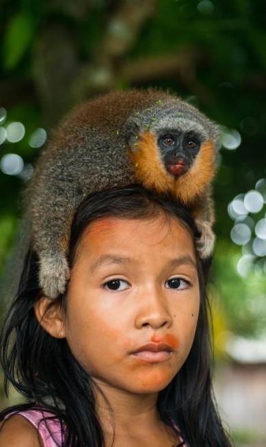 De acordo com a ONG, biodiversidade será fortemente afetada Valdemir Cunha / © Valdemir Cunha / Greenpeace
