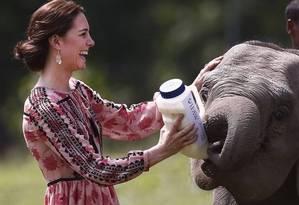 Kate Middleton dá mamadeira para filhote de elefante Foto: ADNAN ABIDI / AP