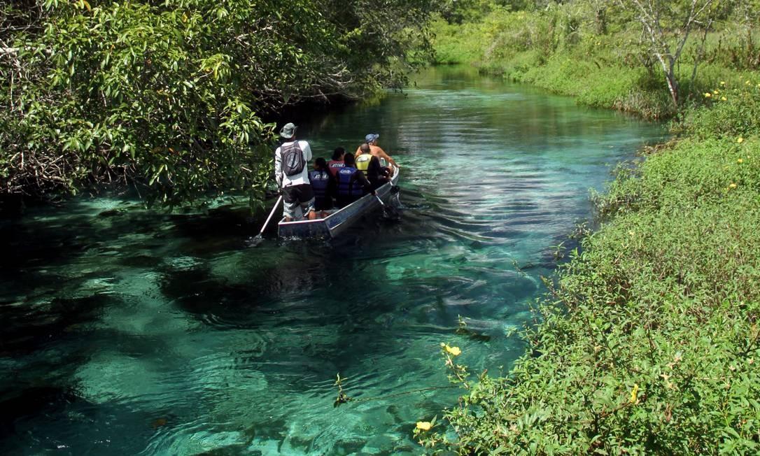 Uma canoa desliza pelas águas transparentes do Rio Sucuri, um dos símbolos do ecoturismo em Bonito, no Mato Grosso do Sul Foto: Eduardo Vessoni / ,