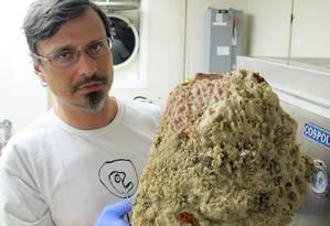 Rodrigo Moura, da UFRJ, com estrutura coletada no recife Foto: DIVULGAÇÃO