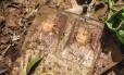 Seis meses após o desastre ambiental na zona rural de Mariana, moradores tentam reconstruir a paisagem. Na foto, álbum de fotografias sujo é encontrado por Moacir Carneiro, de 72 anos, que perdeu a casa na tragédia