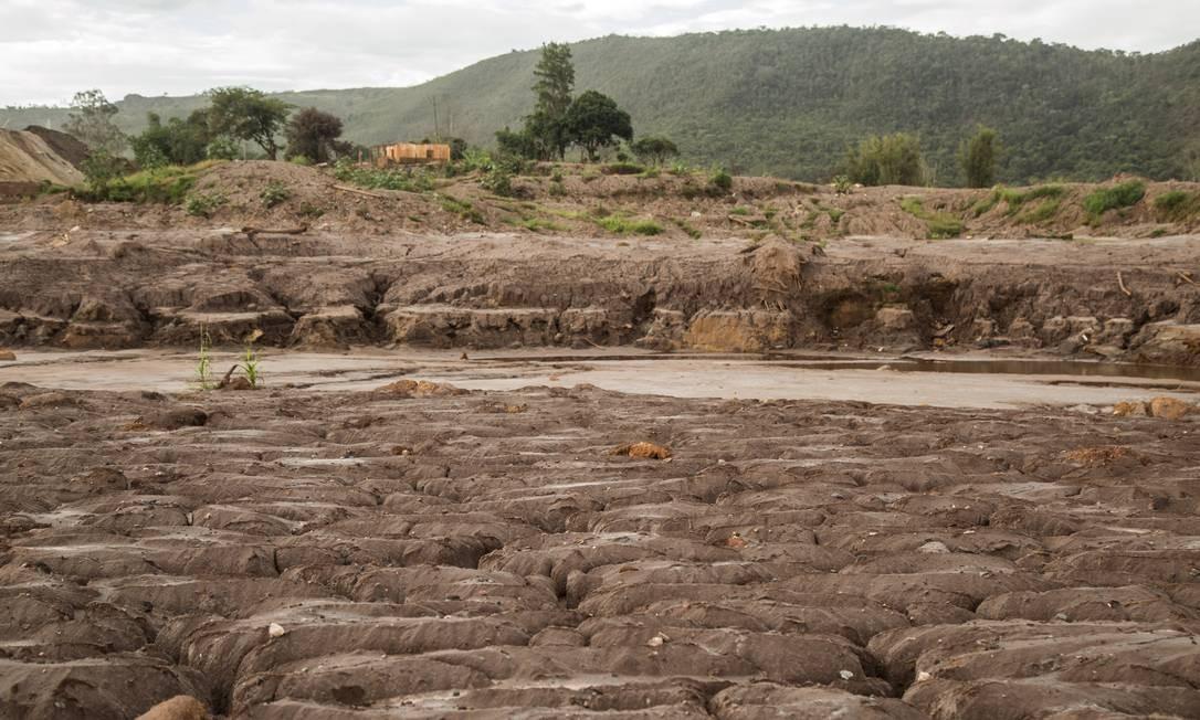 O rompimento de barragens de rejeitos de mineração da empresa Samarco provocou uma enxurrada de lama que atingiu cerca de quinze metros de altura, no distrito de Bento Rodrigues. Casas e igrejas foram destruídas pela força da lama Foto: Ana Branco / Agência O Globo