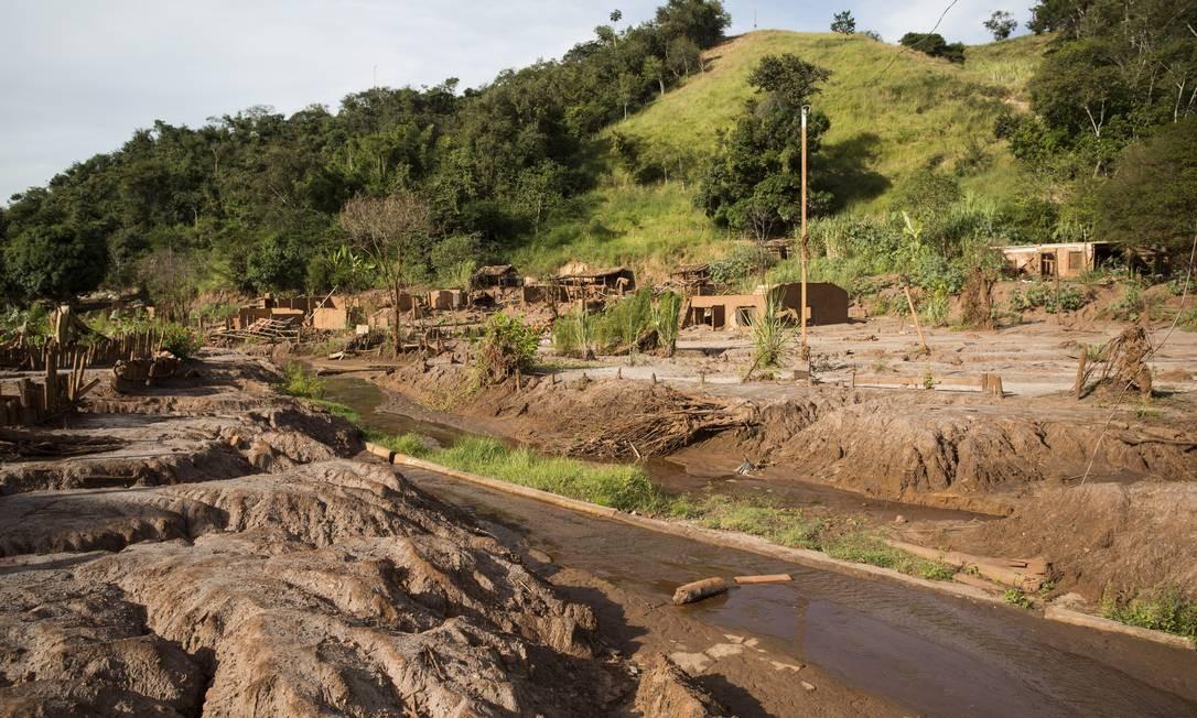 A Samarco desrespeitou duas exigências do Ibama na construção da barragem de Fundão em Mariana (MG), com desmate de vegetação além do permitido pelo órgão federal, e falta de reflorestamento de uma área de 263 hectares, o que levou à aplicação de duas multas à mineradora quatro anos antes do desastre Foto: Ana Branco / Agência O Globo