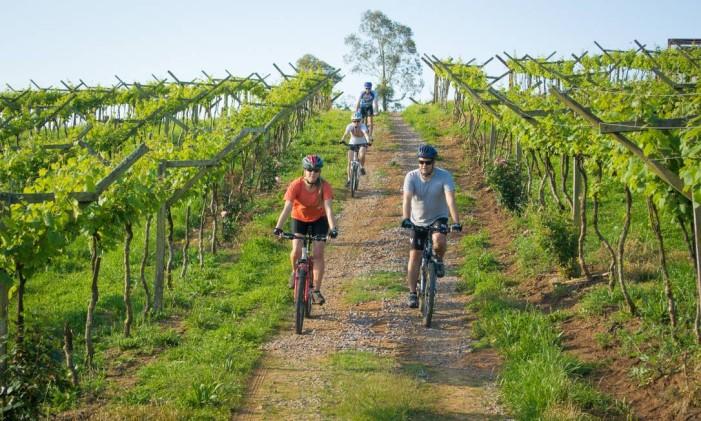 Passeio de biciclega na Serra Gaúcha Foto: Jonatha Jünge / Divulgação