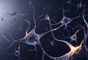 Neurônios em ação. Teoria sobre a confiança é o primeiro passo para desvendar como o cérebro trabalha nisso Foto: Latinstock / © Viaframe/Corbis