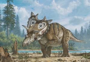 Ilustração mostra como era a espécie recém-descoberta Spiclypeus shipporum, batizada de Judith Foto: Divulgação