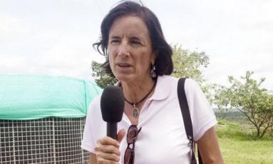 Salud é experiente na cobertura da guerrilha Foto: Reprodução