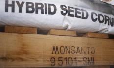 Sacos de milho da Monsanto em armazém em Kentucky, nos Estados Unidos. Foto: Luke Sharrett / Bloomberg / 01/04/2016