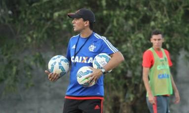Zé Ricardo, técnico dos juniores, vai comandar o Flamengo no domingo Foto: Divulgação
